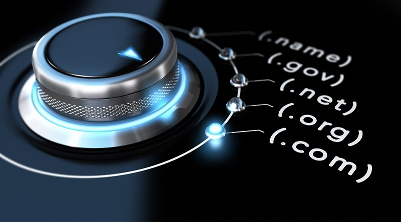 Domain registration data